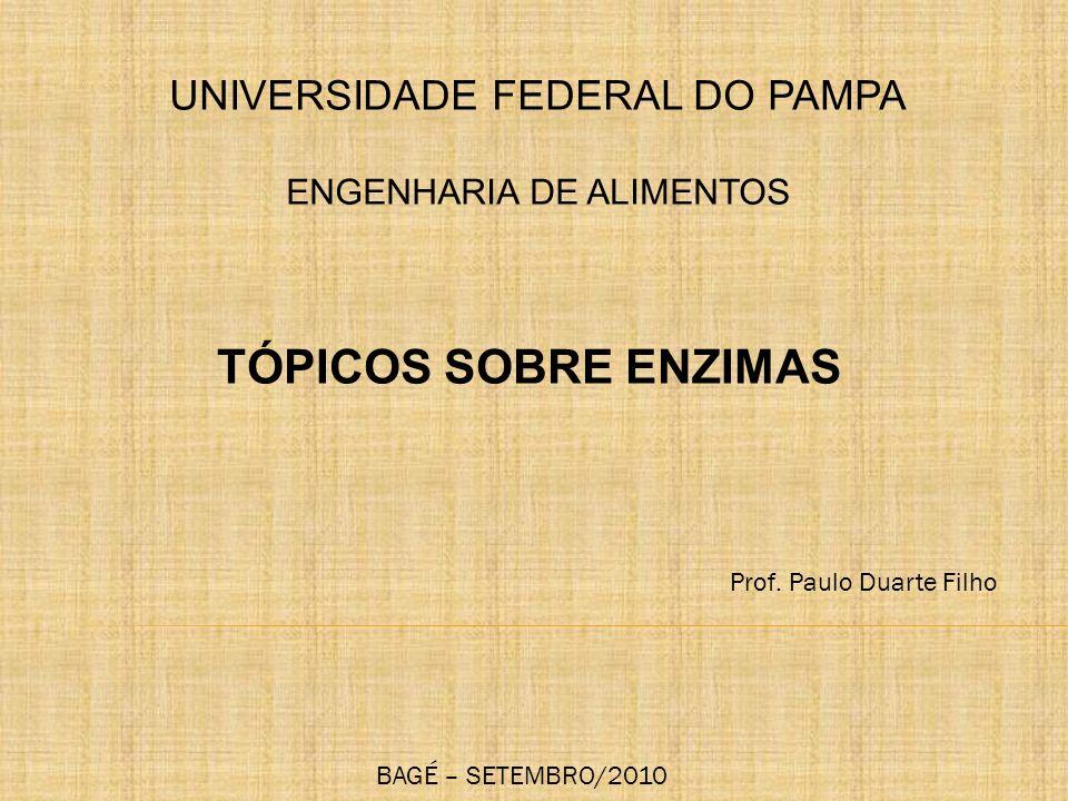 TÓPICOS SOBRE ENZIMAS UNIVERSIDADE FEDERAL DO PAMPA ENGENHARIA DE ALIMENTOS Prof. Paulo Duarte Filho BAGÉ – SETEMBRO/2010
