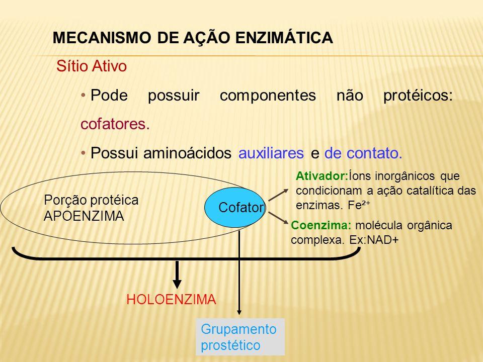 MECANISMO DE AÇÃO ENZIMÁTICA Sítio Ativo Pode possuir componentes não protéicos: cofatores. Possui aminoácidos auxiliares e de contato. Coenzima: molé
