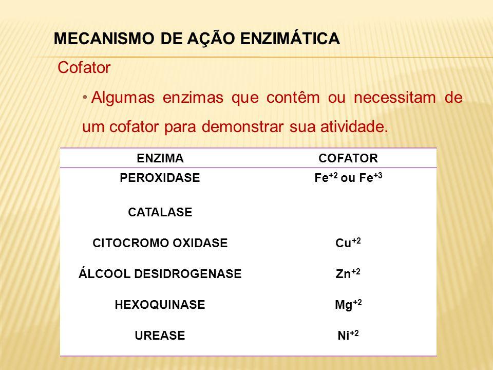 MECANISMO DE AÇÃO ENZIMÁTICA Cofator Algumas enzimas que contêm ou necessitam de um cofator para demonstrar sua atividade. ENZIMACOFATOR PEROXIDASEFe