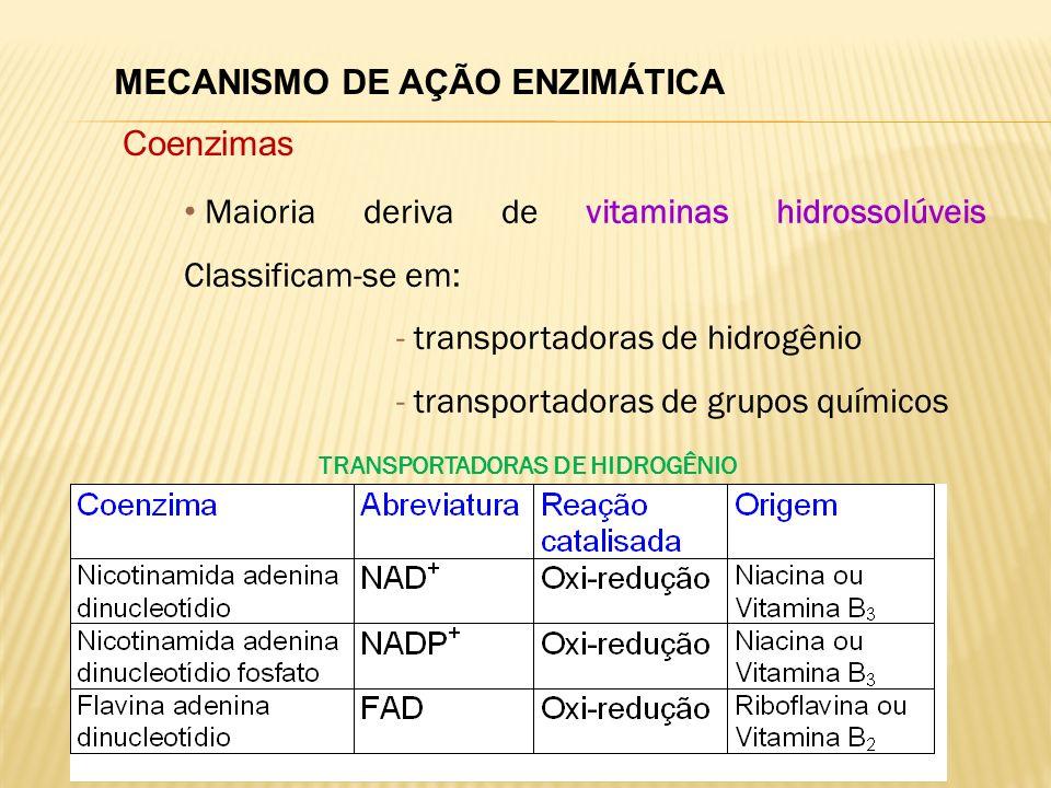 MECANISMO DE AÇÃO ENZIMÁTICA Coenzimas Maioria deriva de vitaminas hidrossolúveis Classificam-se em: - transportadoras de hidrogênio - transportadoras