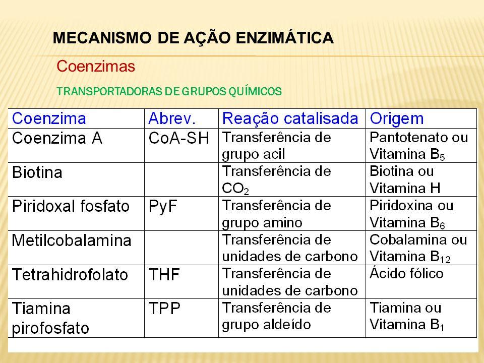 MECANISMO DE AÇÃO ENZIMÁTICA Coenzimas TRANSPORTADORAS DE GRUPOS QUÍMICOS