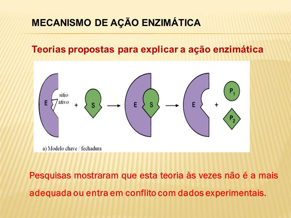 MECANISMO DE AÇÃO ENZIMÁTICA Teorias propostas para explicar a ação enzimática Pesquisas mostraram que esta teoria às vezes não é a mais adequada ou e