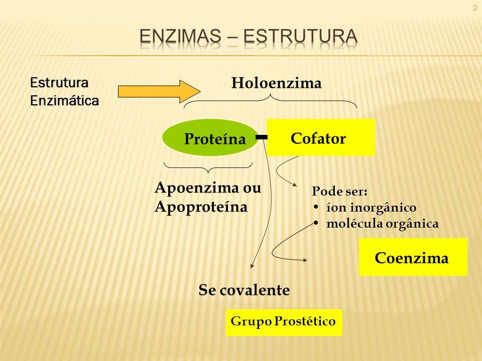 2EstruturaEnzimática Se covalente Apoenzima ou Apoproteína Grupo Prostético Holoenzima Cofator Coenzima Proteína Pode ser: íon inorgânico molécula org