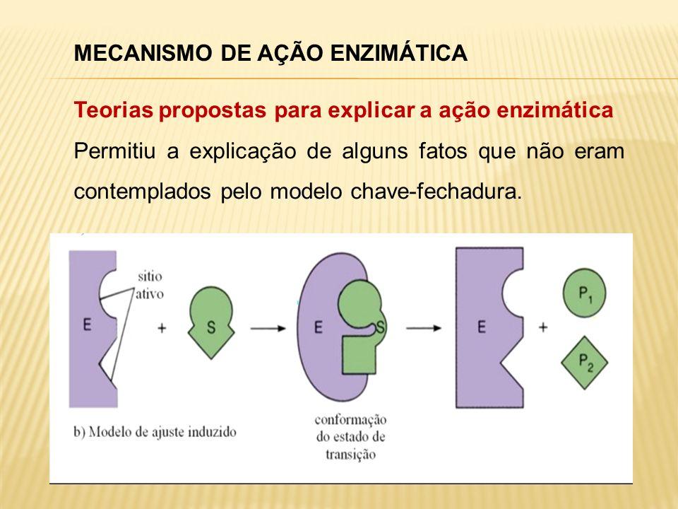 MECANISMO DE AÇÃO ENZIMÁTICA Teorias propostas para explicar a ação enzimática Permitiu a explicação de alguns fatos que não eram contemplados pelo mo