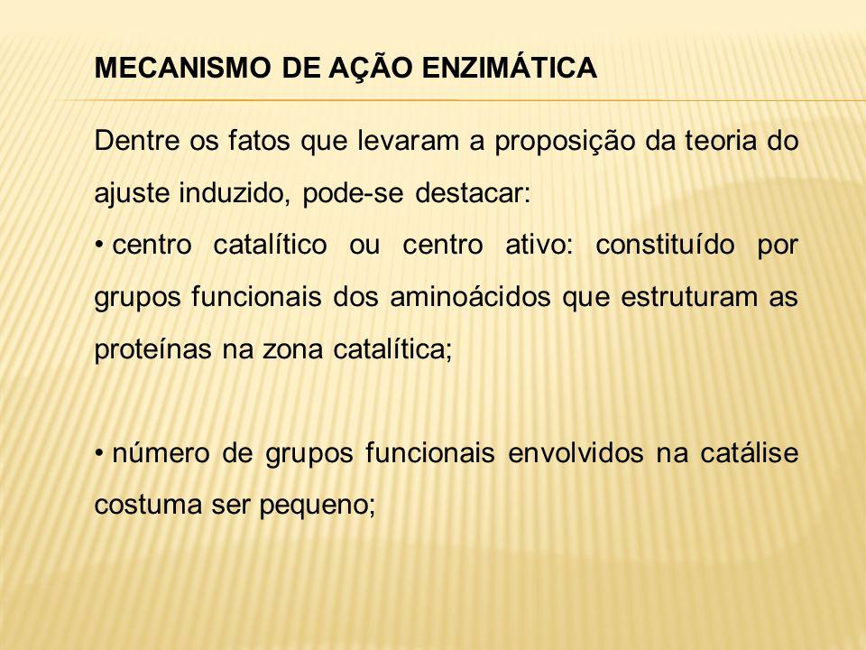MECANISMO DE AÇÃO ENZIMÁTICA Dentre os fatos que levaram a proposição da teoria do ajuste induzido, pode-se destacar: centro catalítico ou centro ativ