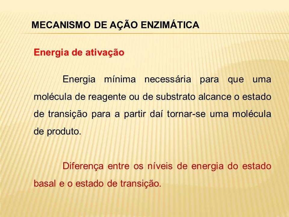 Diferença entre a energia livre de S e P Caminho da Reação Energia de ativação com enzima Energia Energia de ativação sem enzima S P MECANISMO DE AÇÃO ENZIMÁTICA Estado basal Não alteram o estado de equilíbrio diminuem a energia de ativação; Keq não é afetado pela enzima.