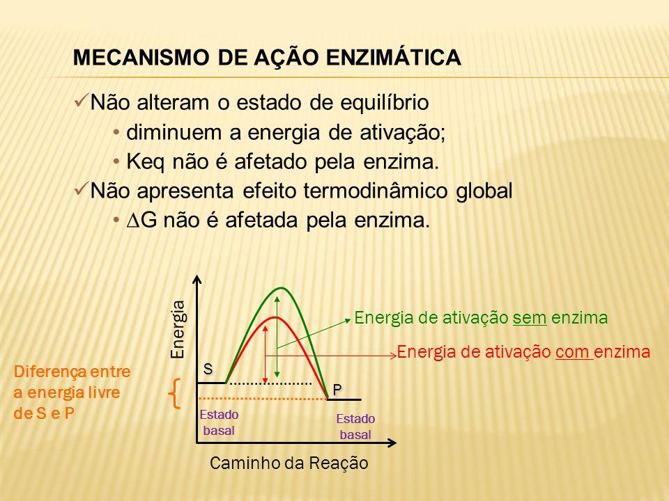 Diferença entre a energia livre de S e P Caminho da Reação Energia de ativação com enzima Energia Energia de ativação sem enzima S P MECANISMO DE AÇÃO