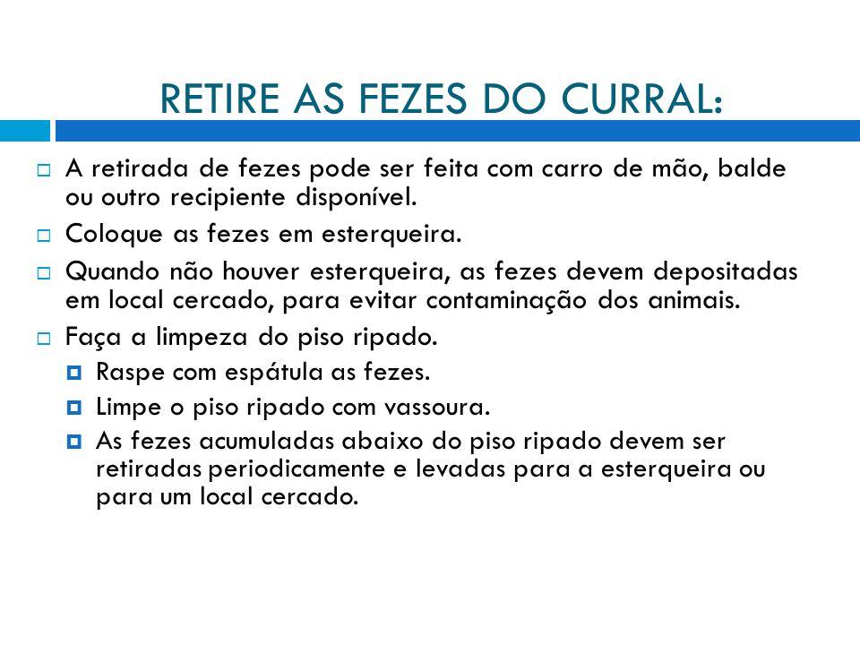 RETIRE AS FEZES DO CURRAL: A retirada de fezes pode ser feita com carro de mão, balde ou outro recipiente disponível.