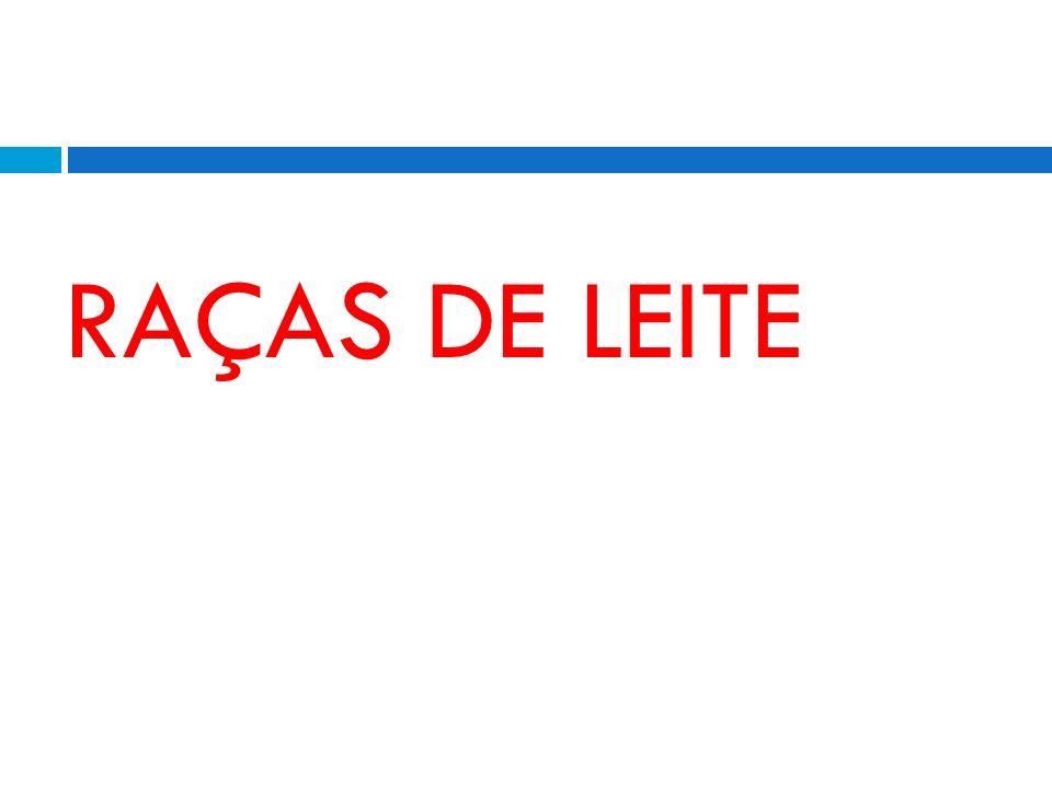 RAÇAS DE LEITE