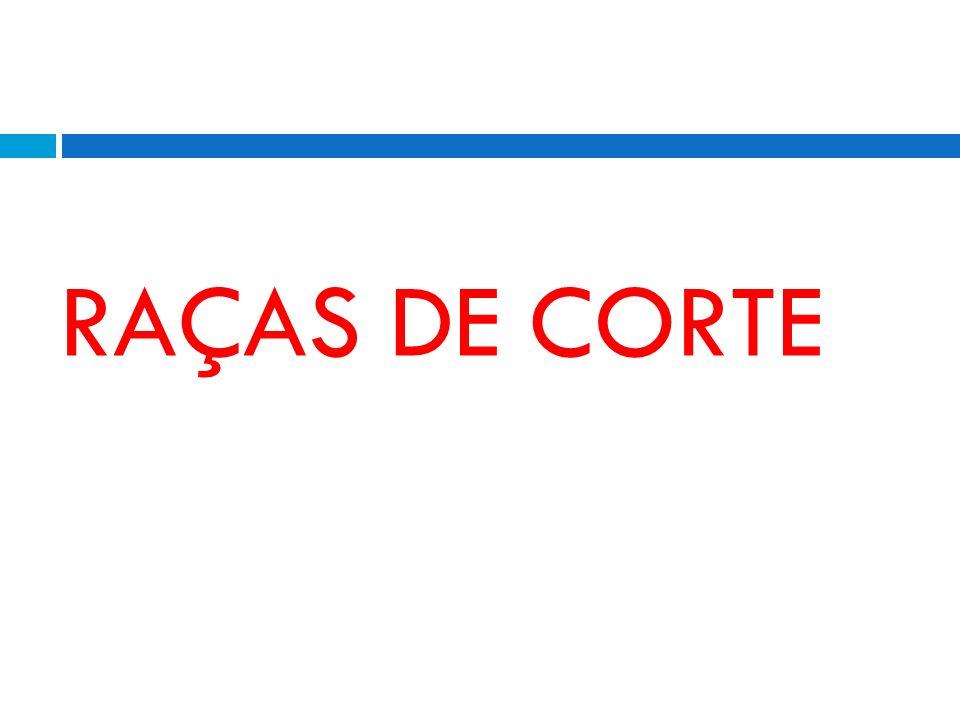 RAÇAS DE CORTE
