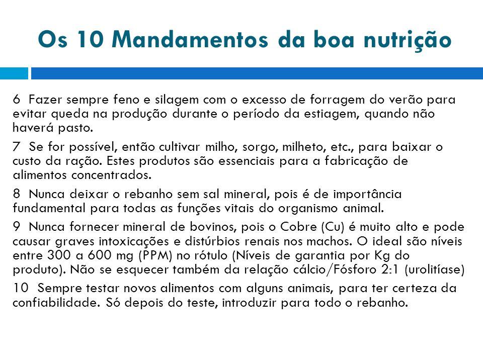 Os 10 Mandamentos da boa nutrição 6 Fazer sempre feno e silagem com o excesso de forragem do verão para evitar queda na produção durante o período da