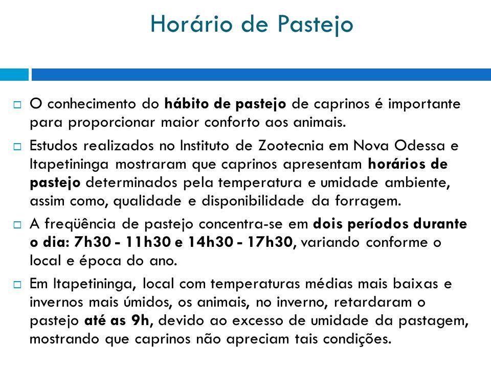 Horário de Pastejo O conhecimento do hábito de pastejo de caprinos é importante para proporcionar maior conforto aos animais.