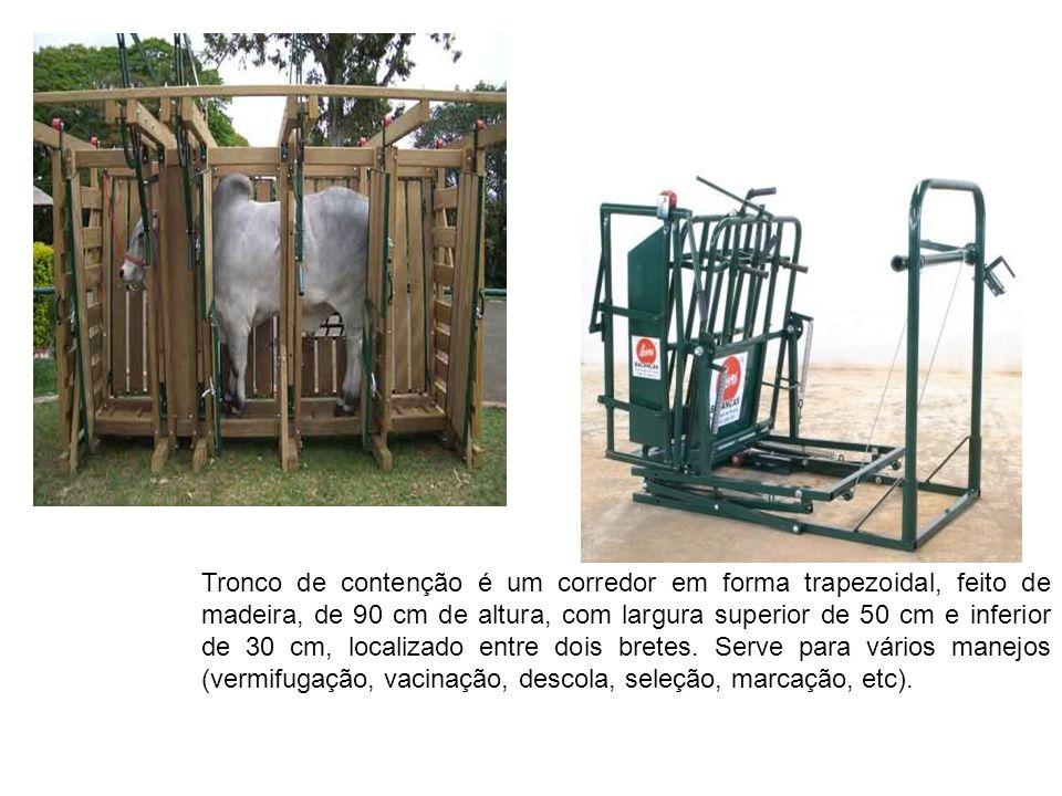 Tronco de contenção é um corredor em forma trapezoidal, feito de madeira, de 90 cm de altura, com largura superior de 50 cm e inferior de 30 cm, local