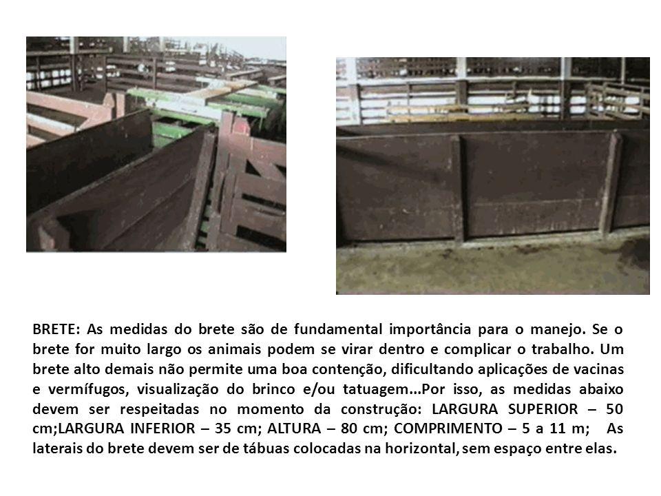 BRETE: As medidas do brete são de fundamental importância para o manejo. Se o brete for muito largo os animais podem se virar dentro e complicar o tra