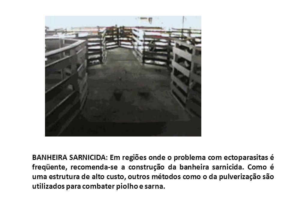 BANHEIRA SARNICIDA: Em regiões onde o problema com ectoparasitas é freqüente, recomenda-se a construção da banheira sarnicida. Como é uma estrutura de