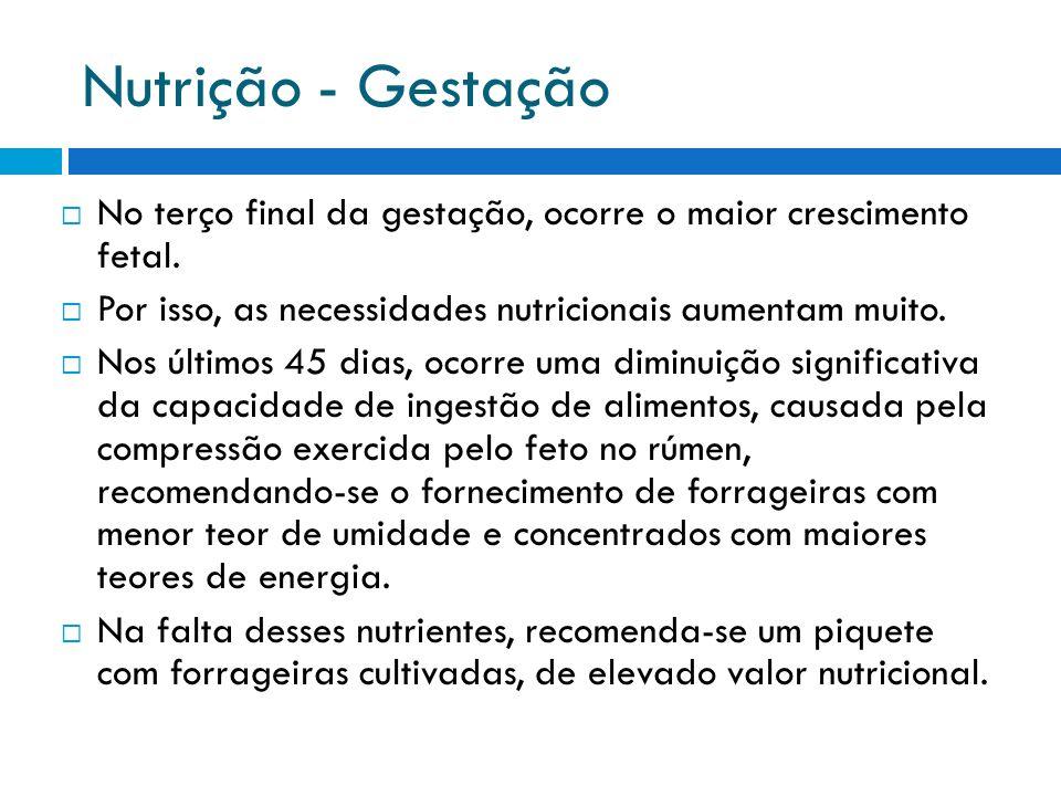 Nutrição - Gestação No terço final da gestação, ocorre o maior crescimento fetal. Por isso, as necessidades nutricionais aumentam muito. Nos últimos 4