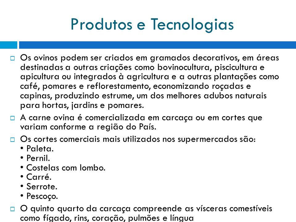 Produtos e Tecnologias Os ovinos podem ser criados em gramados decorativos, em áreas destinadas a outras criações como bovinocultura, piscicultura e a