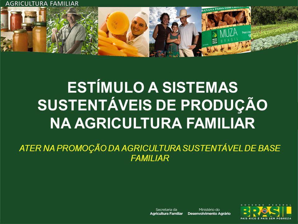 Agricultura Familiar nos Biomas Amazônia: 538 mil estabelecimentos Cerrado: 608 mil Caatinga: 1,5 milhões Mata Atlântica: 1,6 milhões Pampa: 103 mil Pantanal: 6 mil Públicos em sistemas sustentáveis - 320 mil estabelecimentos extrativistas - Mais de 80% do total dos estabelecimentos com práticas orgânicas no país são da agricultura familiar