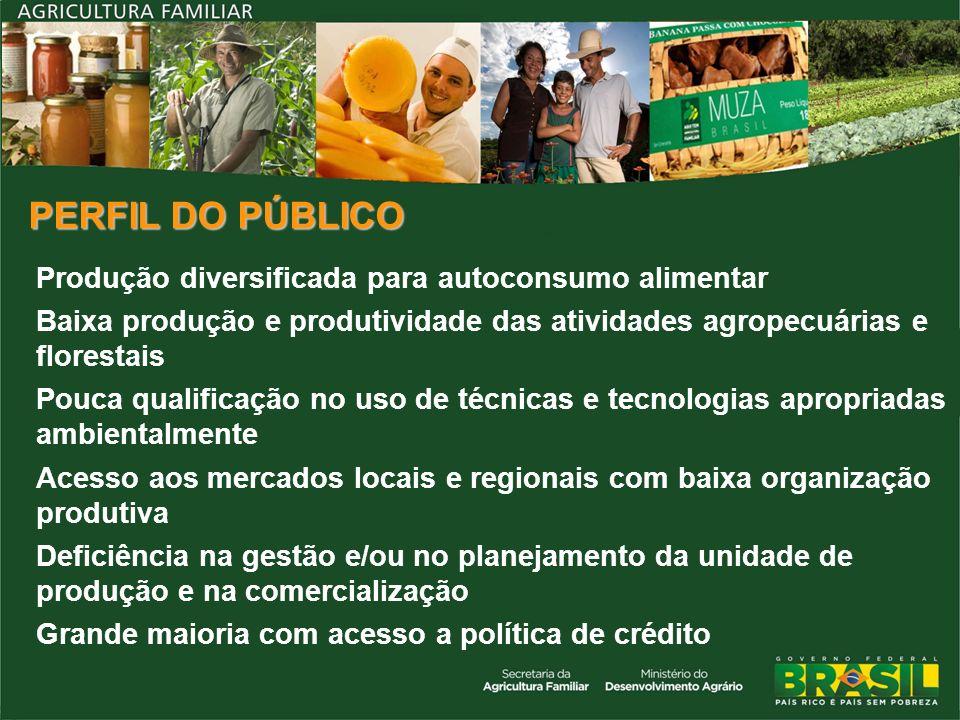 PERFIL DO PÚBLICO Produção diversificada para autoconsumo alimentar Baixa produção e produtividade das atividades agropecuárias e florestais Pouca qua