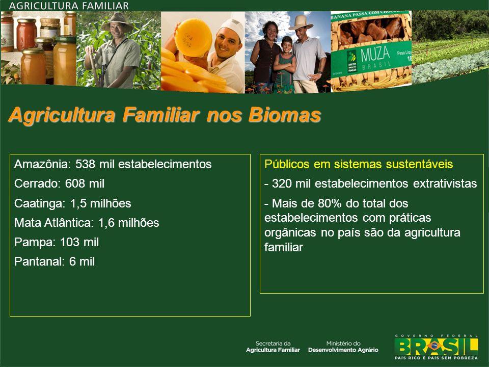 Agricultura Familiar nos Biomas Amazônia: 538 mil estabelecimentos Cerrado: 608 mil Caatinga: 1,5 milhões Mata Atlântica: 1,6 milhões Pampa: 103 mil P