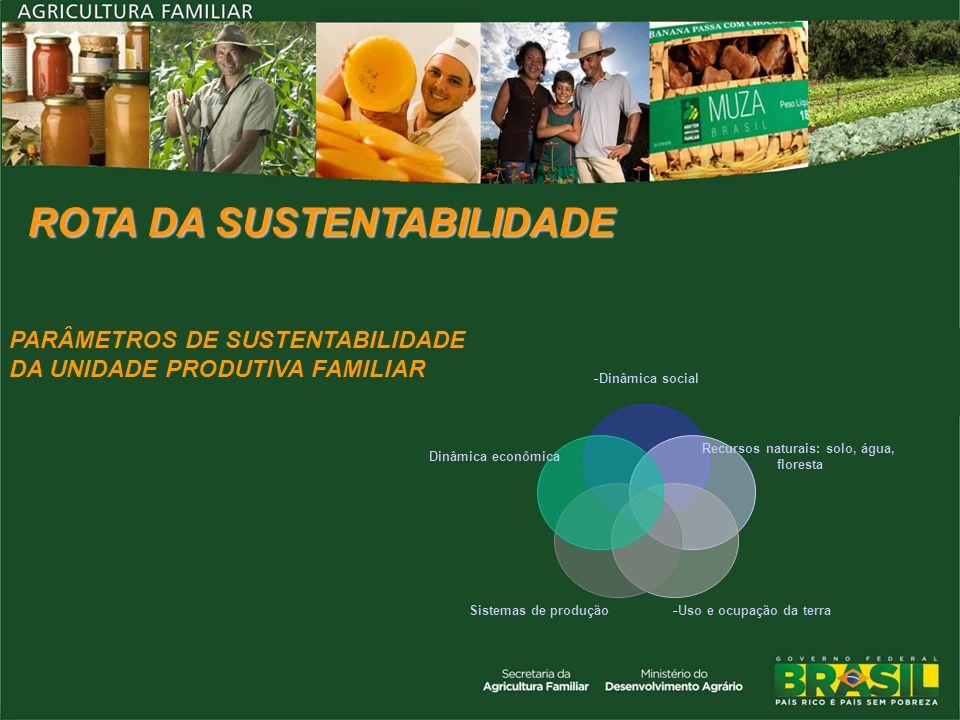 -Dinâmica social Recursos naturais: solo, água, floresta -Uso e ocupação da terraSistemas de produção Dinâmica econômica PARÂMETROS DE SUSTENTABILIDAD