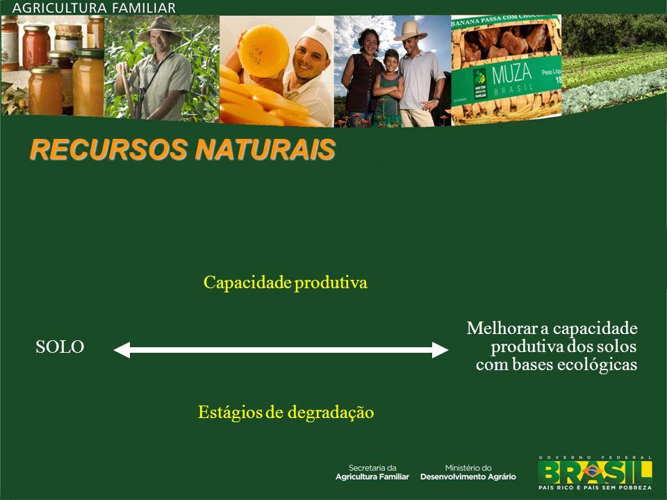 RECURSOS NATURAIS SOLO Capacidade produtiva Melhorar a capacidade produtiva dos solos com bases ecológicas Estágios de degradação