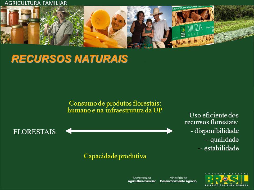 RECURSOS NATURAIS FLORESTAIS Consumo de produtos florestais: humano e na infraestrutura da UP Uso eficiente dos recursos florestais: - disponibilidade
