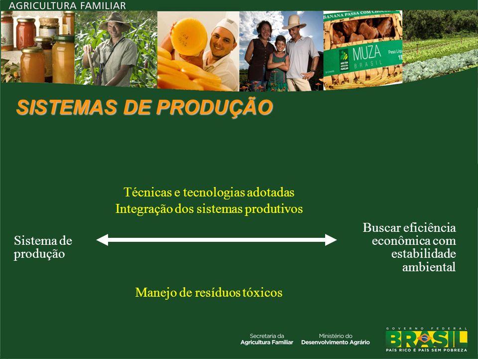 SISTEMAS DE PRODUÇÃO Sistema de produção Técnicas e tecnologias adotadas Integração dos sistemas produtivos Buscar eficiência econômica com estabilida