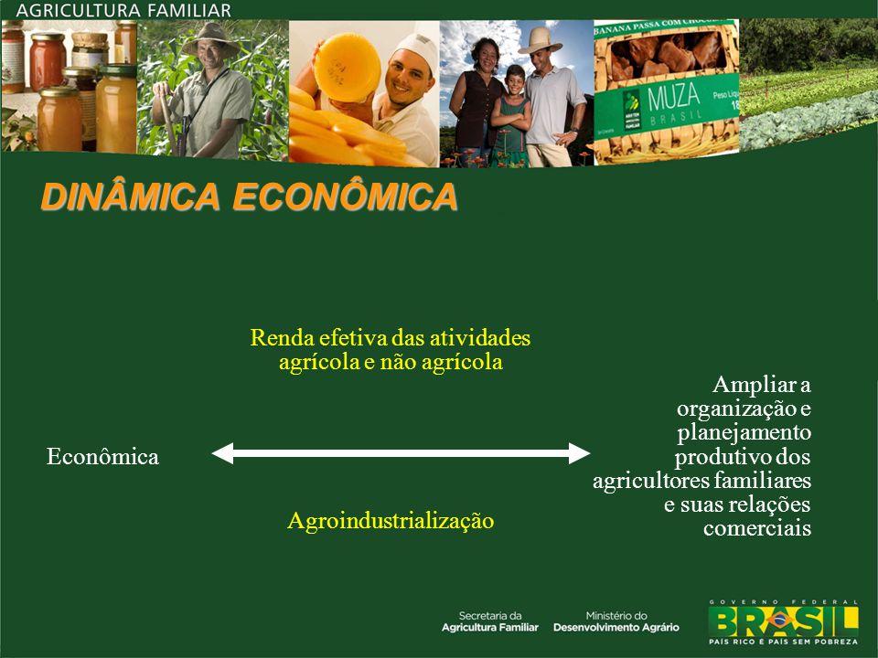 DINÂMICA ECONÔMICA Econômica Renda efetiva das atividades agrícola e não agrícola Ampliar a organização e planejamento produtivo dos agricultores fami