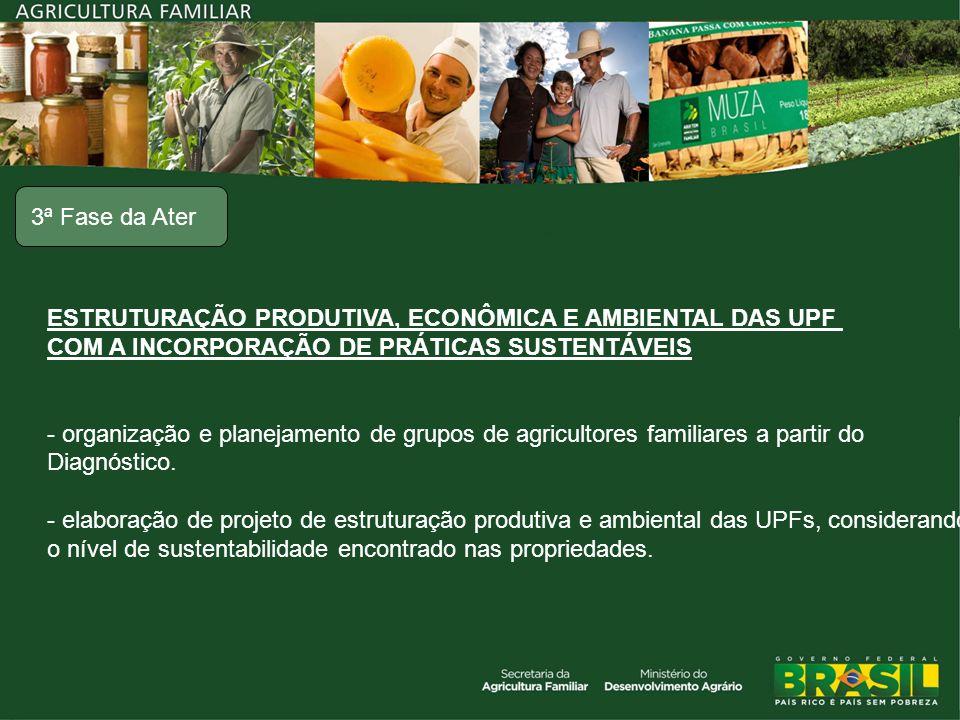 ESTRUTURAÇÃO PRODUTIVA, ECONÔMICA E AMBIENTAL DAS UPF COM A INCORPORAÇÃO DE PRÁTICAS SUSTENTÁVEIS - organização e planejamento de grupos de agricultor
