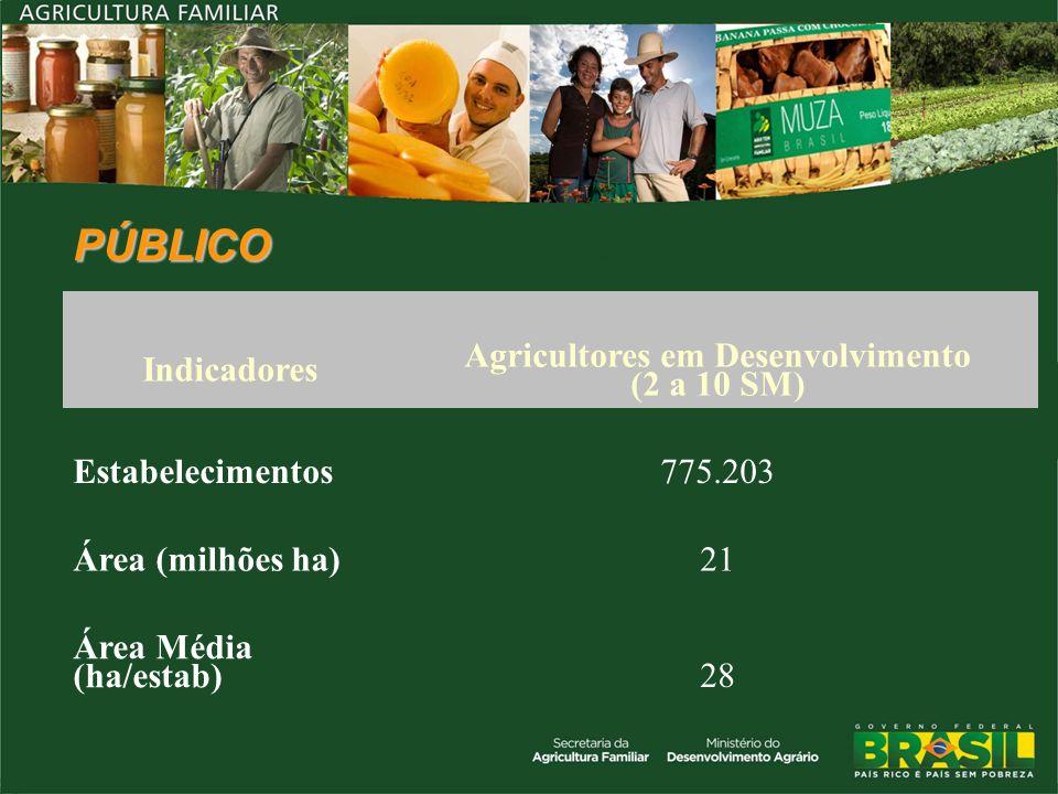 PÚBLICO Indicadores Agricultores em Desenvolvimento (2 a 10 SM) Estabelecimentos775.203 Área (milhões ha)21 Área Média (ha/estab)28