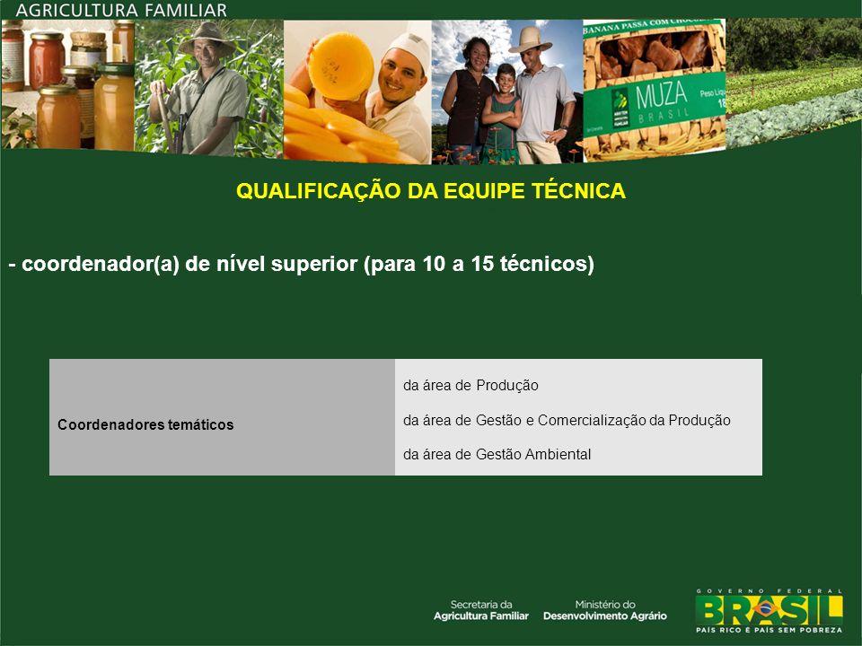 QUALIFICAÇÃO DA EQUIPE TÉCNICA Coordenadores temáticos da área de Produção da área de Gestão e Comercialização da Produção da área de Gestão Ambiental