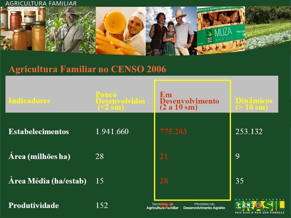 Agricultura Familiar no CENSO 2006 Indicadores Pouco Desenvolvidos (<2 sm) Em Desenvolvimento (2 a 10 sm) Dinâmicos (> 10 sm) Estabelecimentos1.941.66