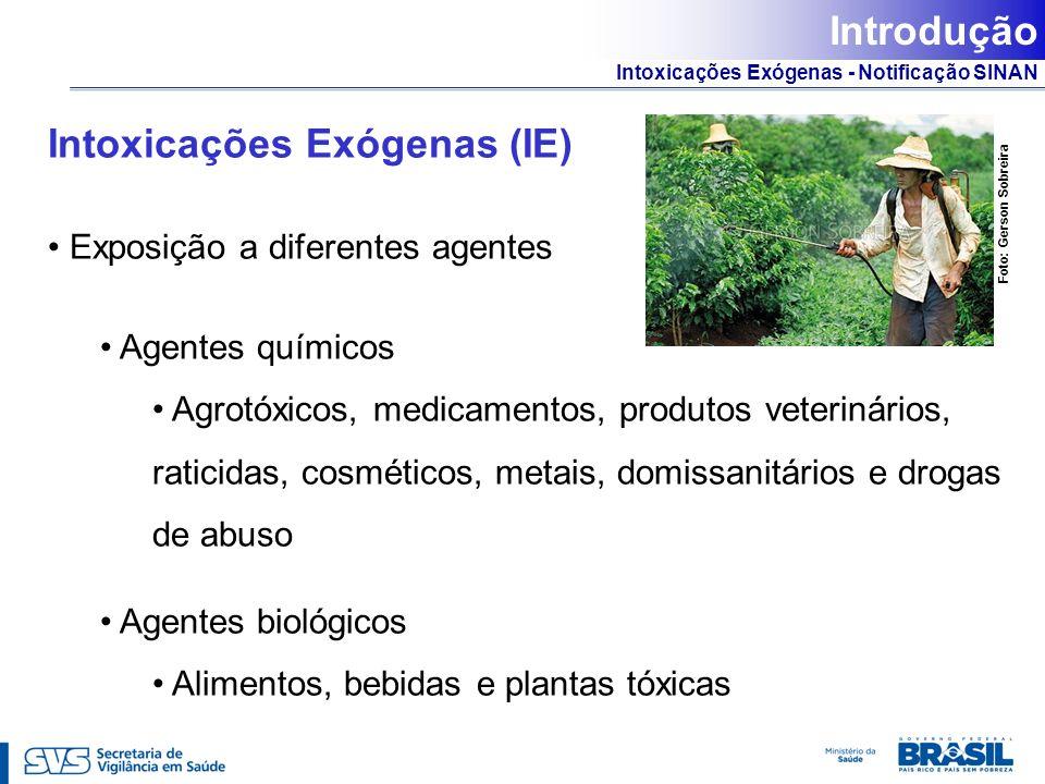 Intoxicações Exógenas - Notificação SINAN Intoxicações Exógenas (IE) Exposição a diferentes agentes Agentes químicos Agrotóxicos, medicamentos, produt