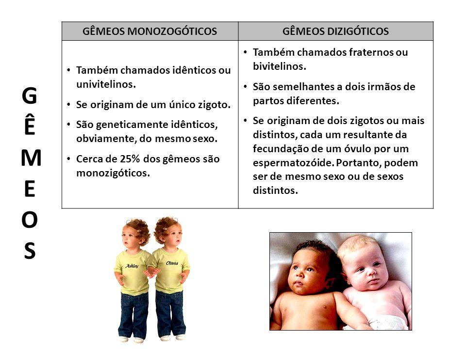 GÊMEOS MONOZOGÓTICOSGÊMEOS DIZIGÓTICOS Também chamados idênticos ou univitelinos.