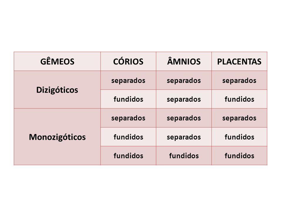 GÊMEOSCÓRIOSÂMNIOSPLACENTAS Dizigóticos separados fundidosseparadosfundidos Monozigóticos separados fundidosseparadosfundidos