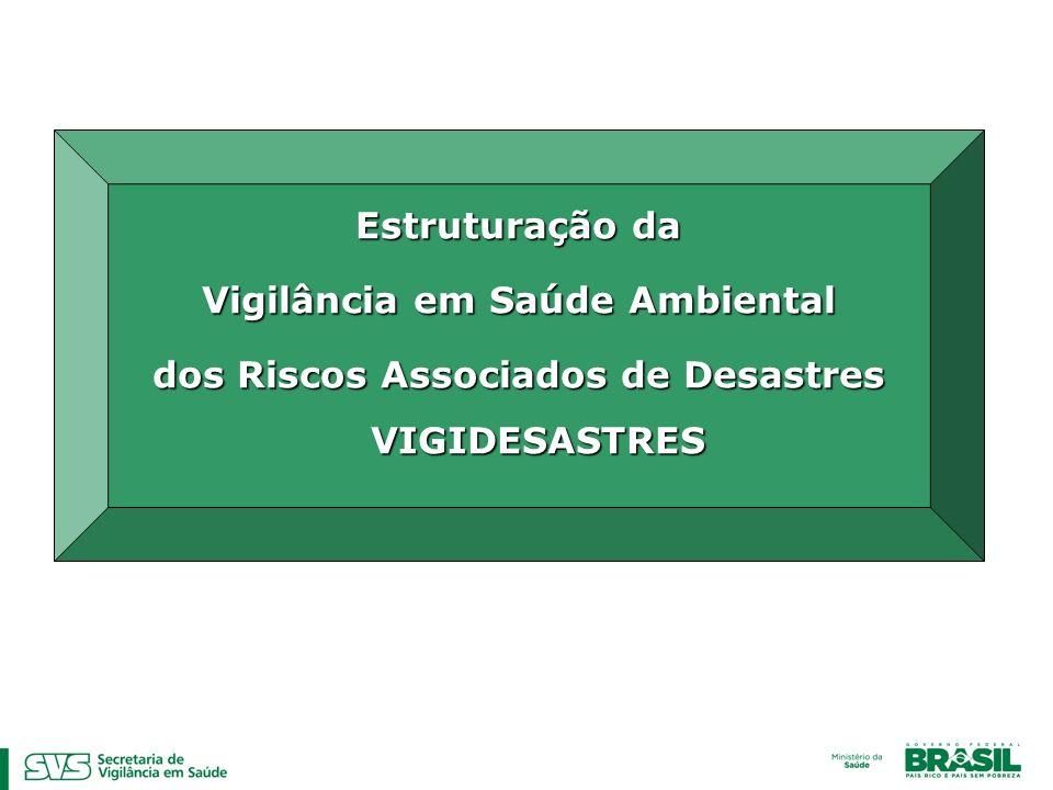 Estruturação da Vigilância em Saúde Ambiental dos Riscos Associados de Desastres VIGIDESASTRES