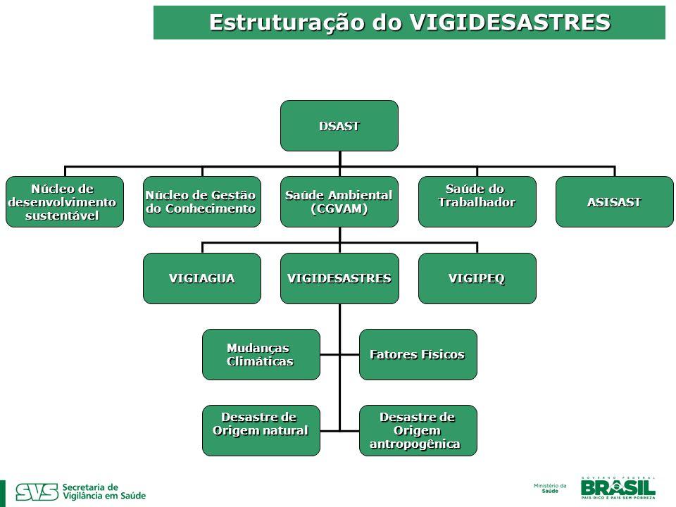 Estruturação do VIGIDESASTRES DSAST Núcleo de desenvolvimentosustentável Saúde Ambiental (CGVAM) Saúde do Trabalhador Núcleo de Gestão do Conhecimento