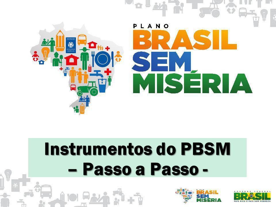 Instrumentos do PBSM – Passo a Passo -