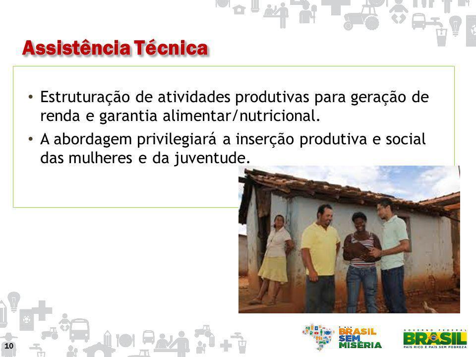Estruturação de atividades produtivas para geração de renda e garantia alimentar/nutricional. A abordagem privilegiará a inserção produtiva e social d