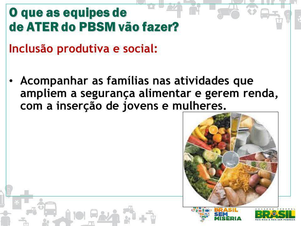 O que as equipes de de ATER do PBSM vão fazer? Inclusão produtiva e social: Acompanhar as famílias nas atividades que ampliem a segurança alimentar e