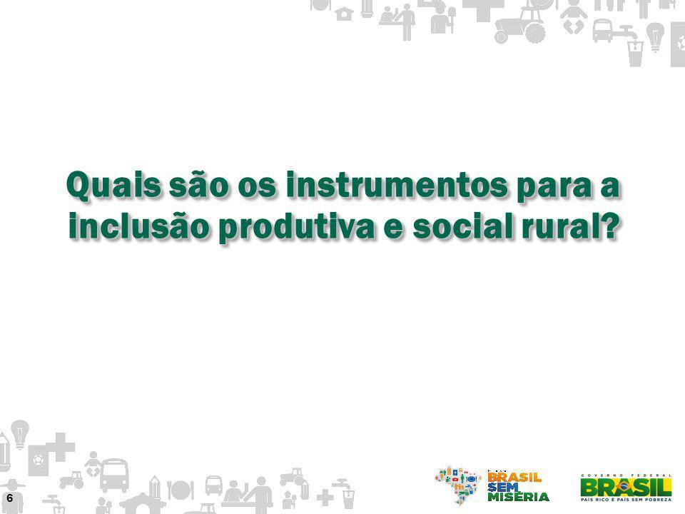 Quais são os instrumentos para a inclusão produtiva e social rural? 6