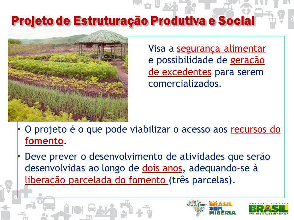 CONSIDERAÇÕES IMPORTANTES Atividades do projeto definem o valor global de fomento, respeitado o teto de R$ 2.400,00.