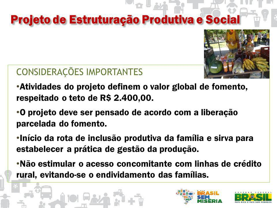 CONSIDERAÇÕES IMPORTANTES Atividades do projeto definem o valor global de fomento, respeitado o teto de R$ 2.400,00. O projeto deve ser pensado de aco