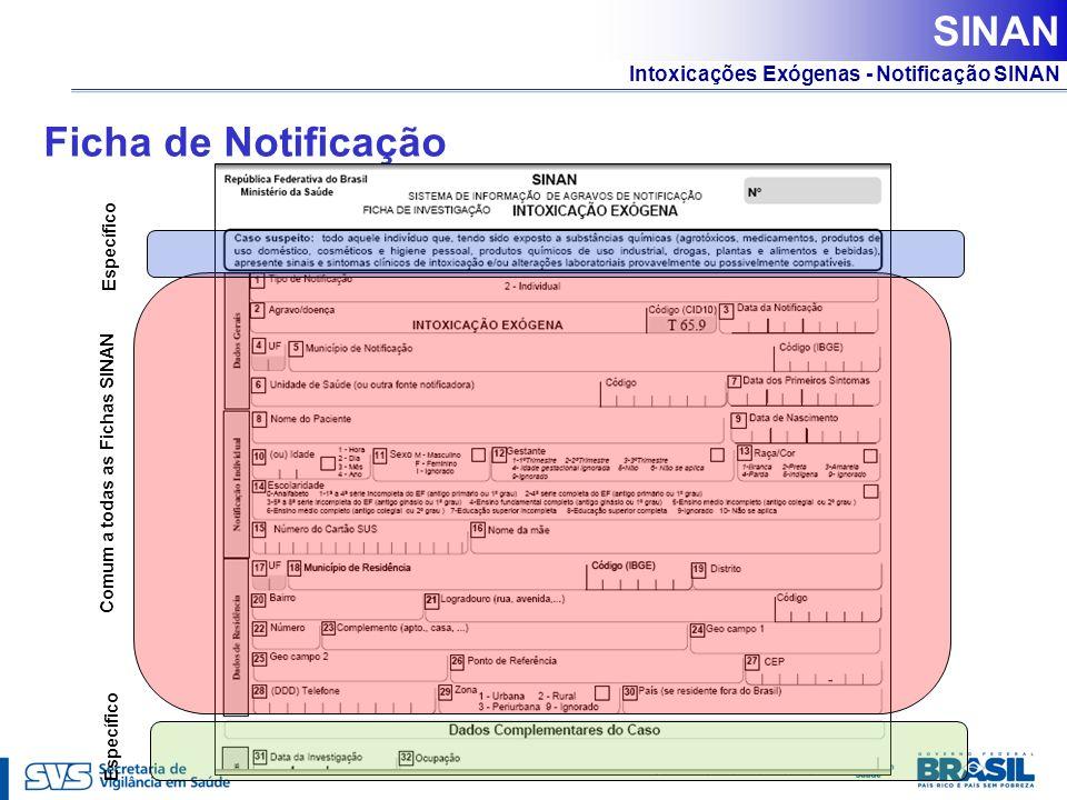 Intoxicações Exógenas - Notificação SINAN Ficha de Notificação Comum a todas as Fichas SINAN Específico SINAN