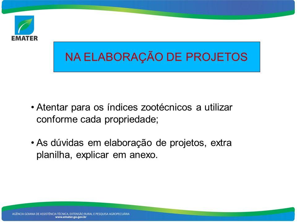 NA ELABORAÇÃO DE PROJETOS Atentar para os índices zootécnicos a utilizar conforme cada propriedade; As dúvidas em elaboração de projetos, extra planil
