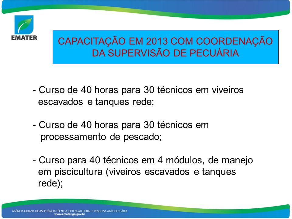 CAPACITAÇÃO EM 2013 COM COORDENAÇÃO DA SUPERVISÃO DE PECUÁRIA - Curso de 40 horas para 30 técnicos em viveiros escavados e tanques rede; - Curso de 40