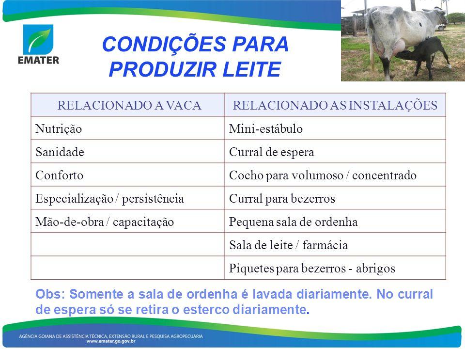 CONDIÇÕES PARA PRODUZIR LEITE RELACIONADO A VACARELACIONADO AS INSTALAÇÕES NutriçãoMini-estábulo SanidadeCurral de espera ConfortoCocho para volumoso