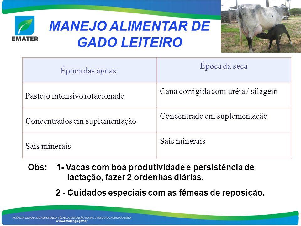 MANEJO ALIMENTAR DE GADO LEITEIRO Época das águas: Época da seca Pastejo intensivo rotacionado Cana corrigida com uréia / silagem Concentrados em supl