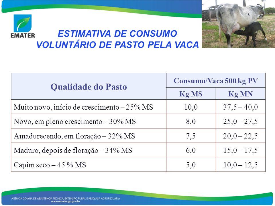 ESTIMATIVA DE CONSUMO VOLUNTÁRIO DE PASTO PELA VACA Qualidade do Pasto Consumo/Vaca 500 kg PV Kg MSKg MN Muito novo, início de crescimento – 25% MS10,